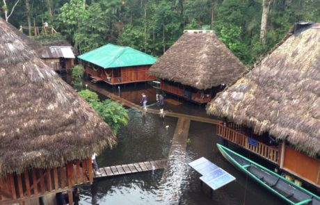 Beautiful Amazon Lodge