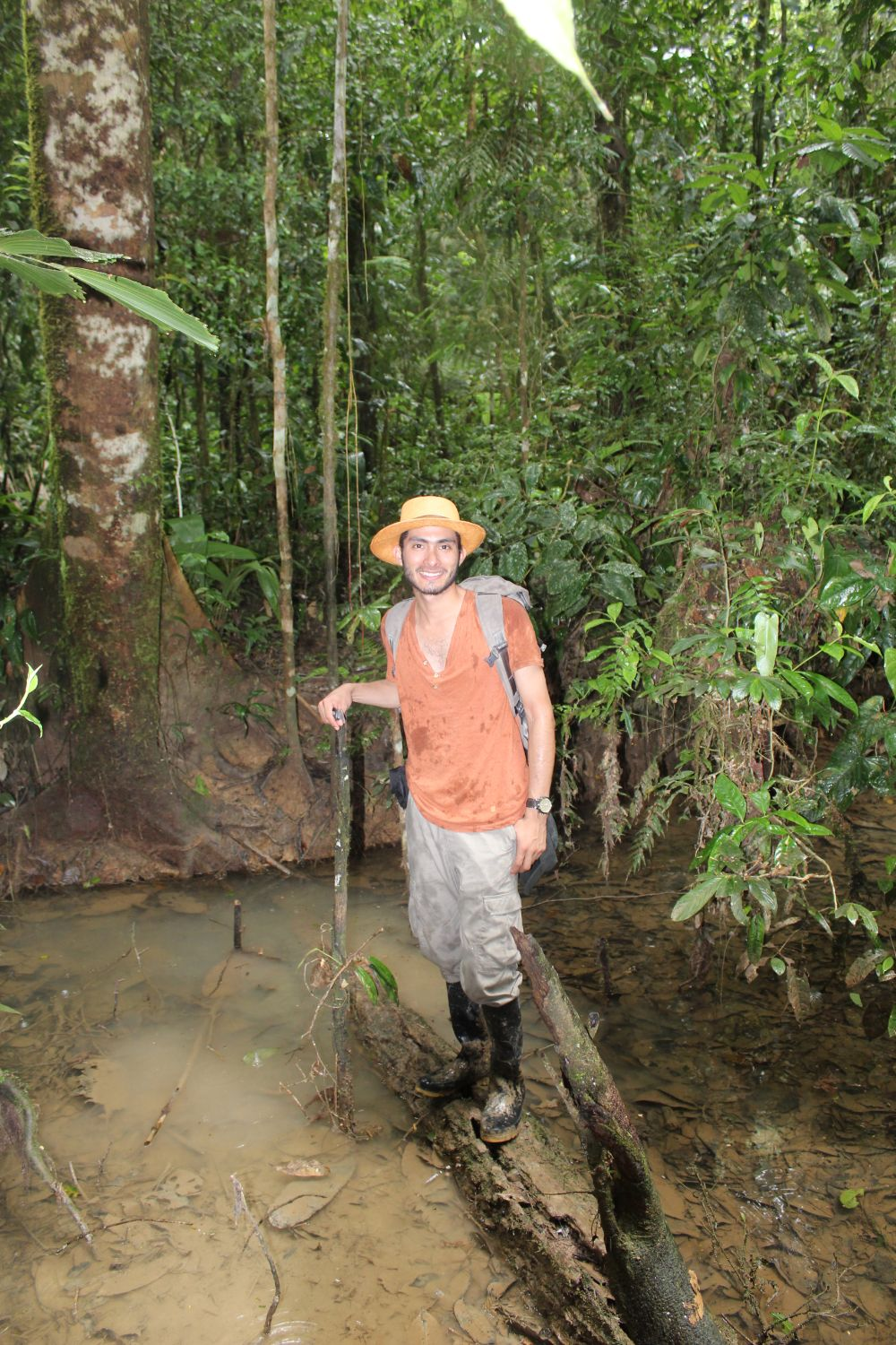 Hiking in Amazon