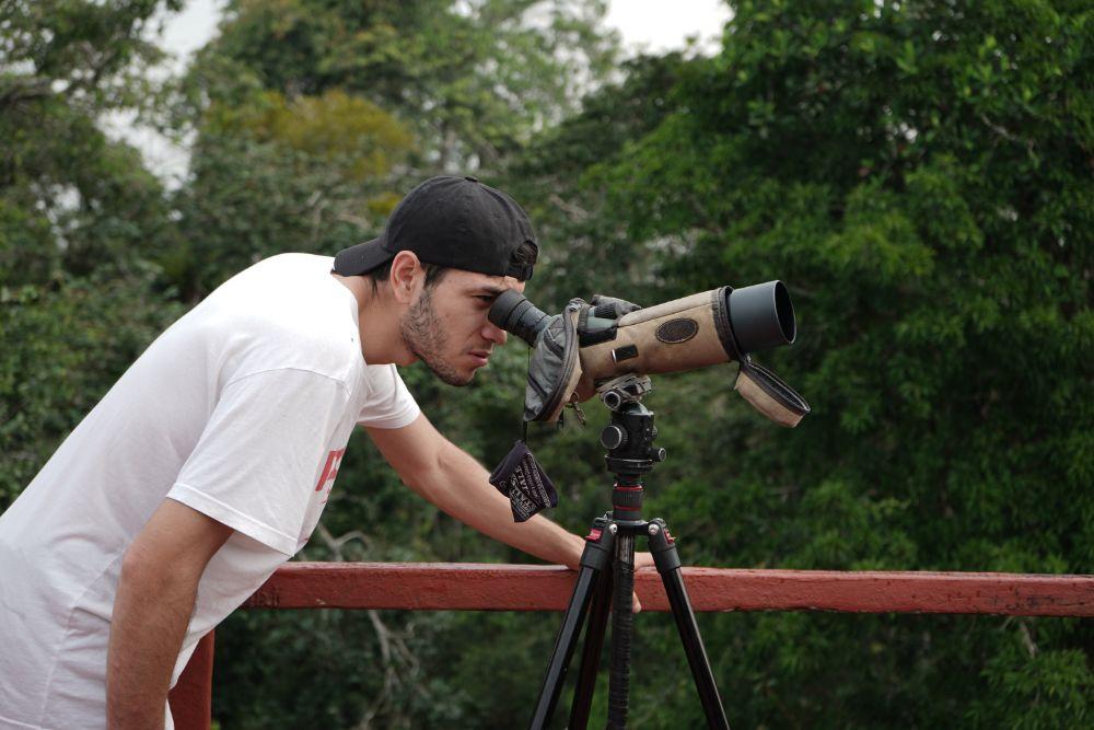 Tower Amazon Watching